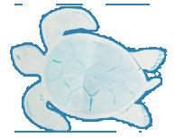tortuga-cuenteando